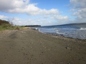 Duck Cove waterfront homes for sale