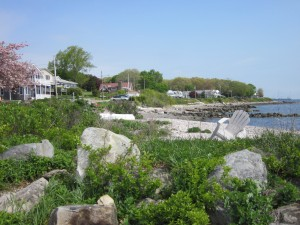 Bissel Cove