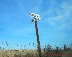 Calef Avenue Neighborhood- Narragansett RI- Point Judith Way real estate