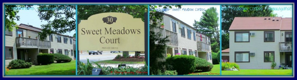 Sweet Meadows Narragansett collage