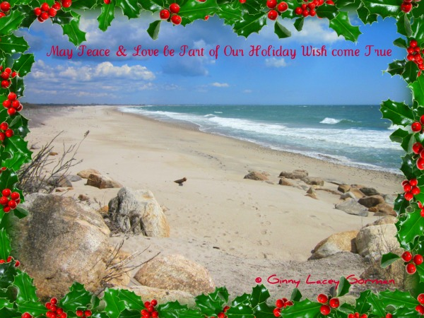 Happy Holidays from RI Real Estate Agent