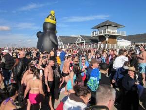 Penguin Plunge - Narragansett RI - New Years Day 2012