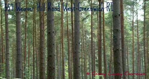 Time for New Construction-Grab the West Greenwich RI real estate
