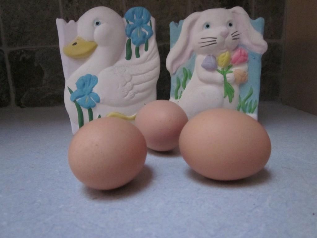 Wickford RI Easter Egg Hunt Saturday- real estate